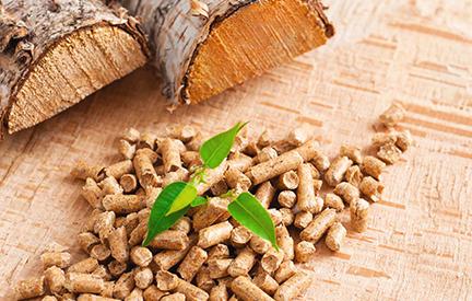 Альтернативные источники энергии: все «за» использования древесной пеллеты